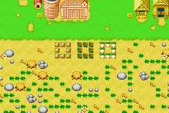 Harvest Moon - More Friends of Mineral Town - Misc  - My farm, day one. - User Screenshot